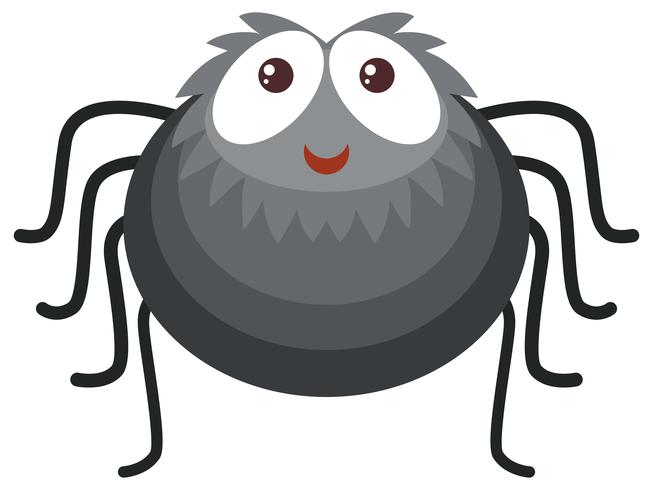 Black Spider On White Background Download Free Vectors Clipart Graphics Vector Art