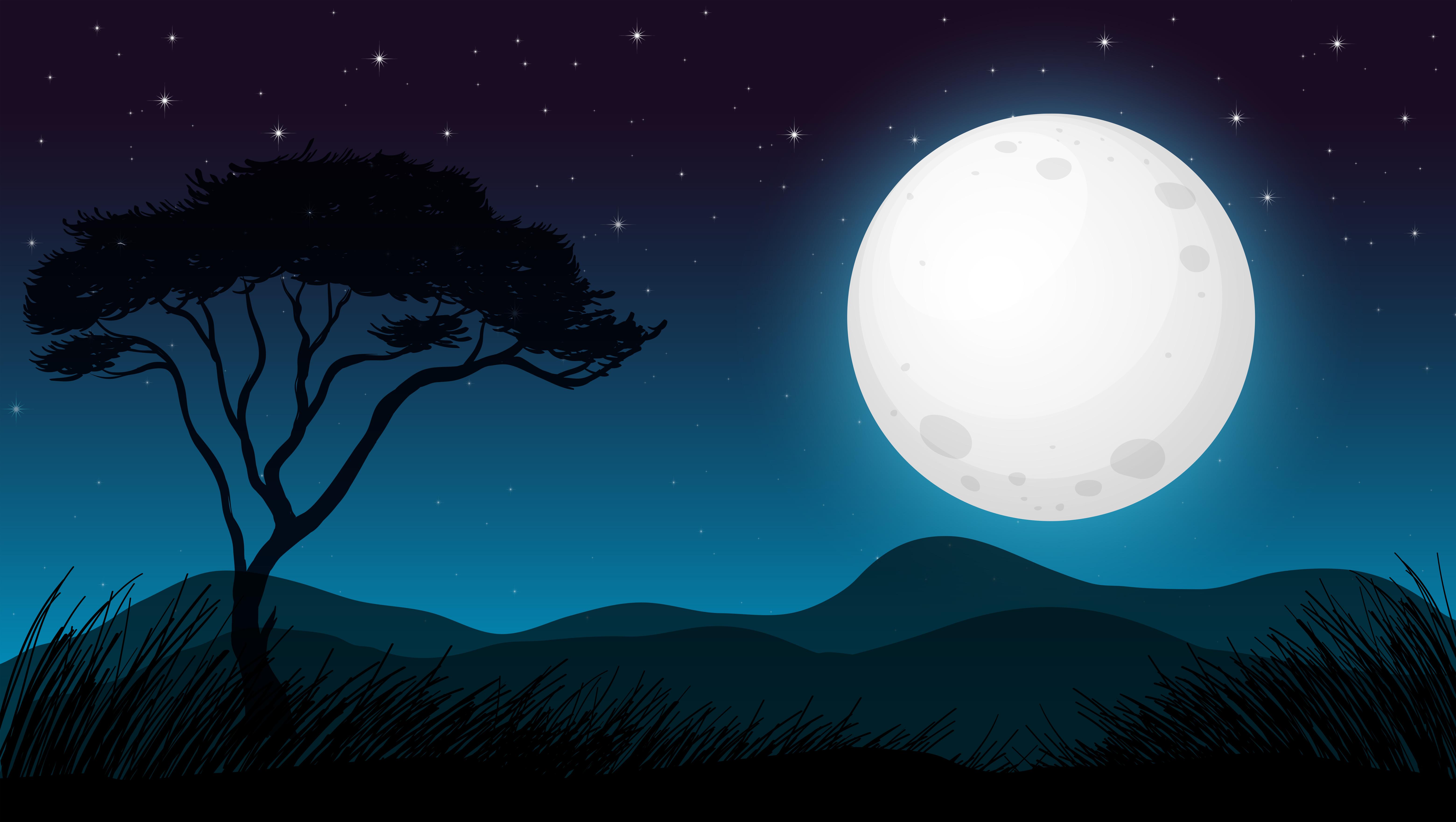 Cute Baby Wallpaper Backgrounds Savanna Forest In Dark Night Download Free Vector Art