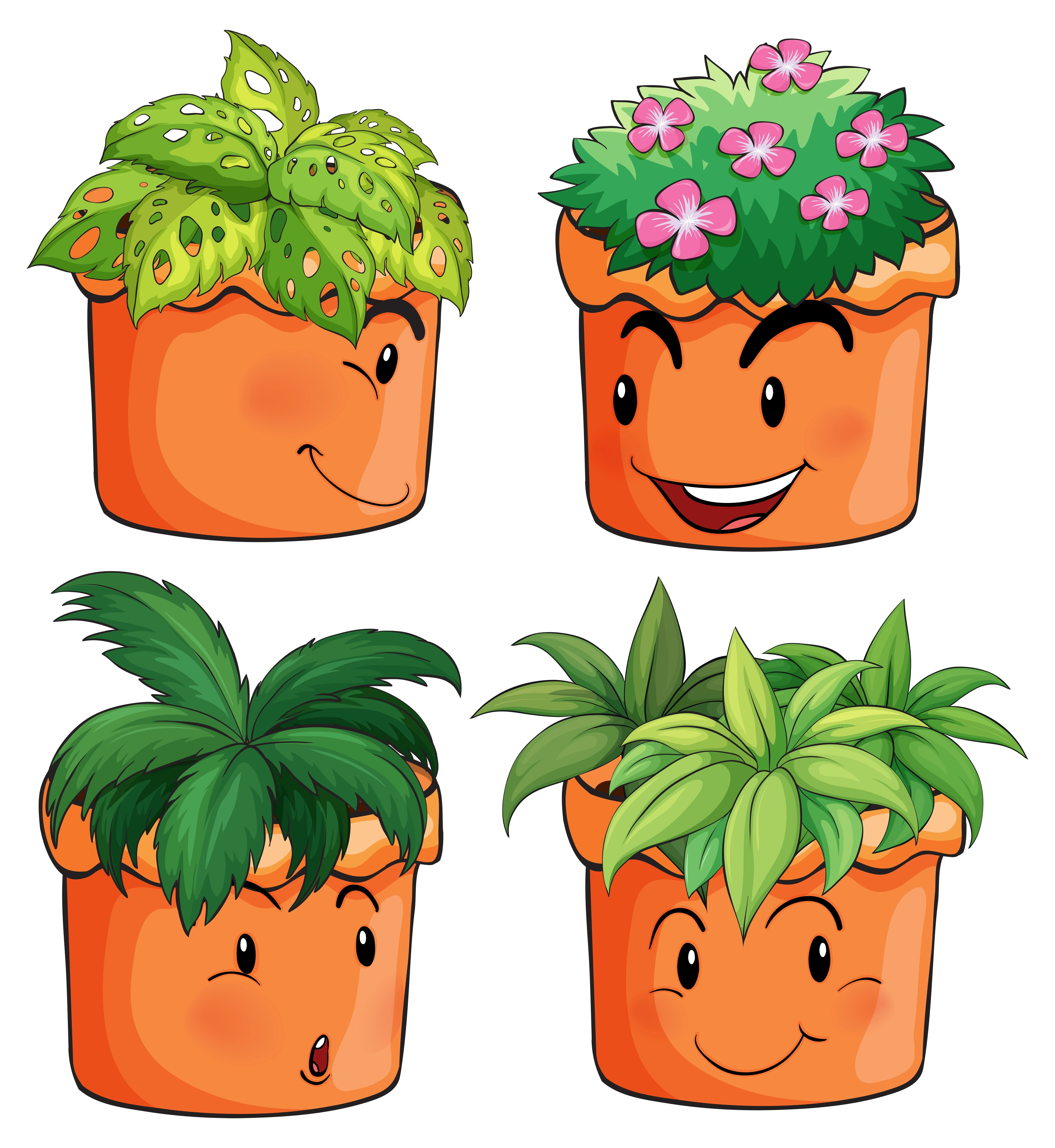 Flower Pots With Different Types Of Plants