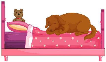 Dog slepping on pink bed Download Free Vectors Clipart Graphics & Vector Art