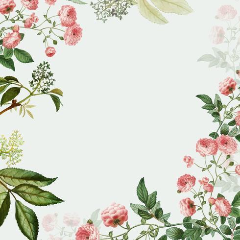 Rosa Blumenrahmen  Kostenlose VektorKunst Archiv