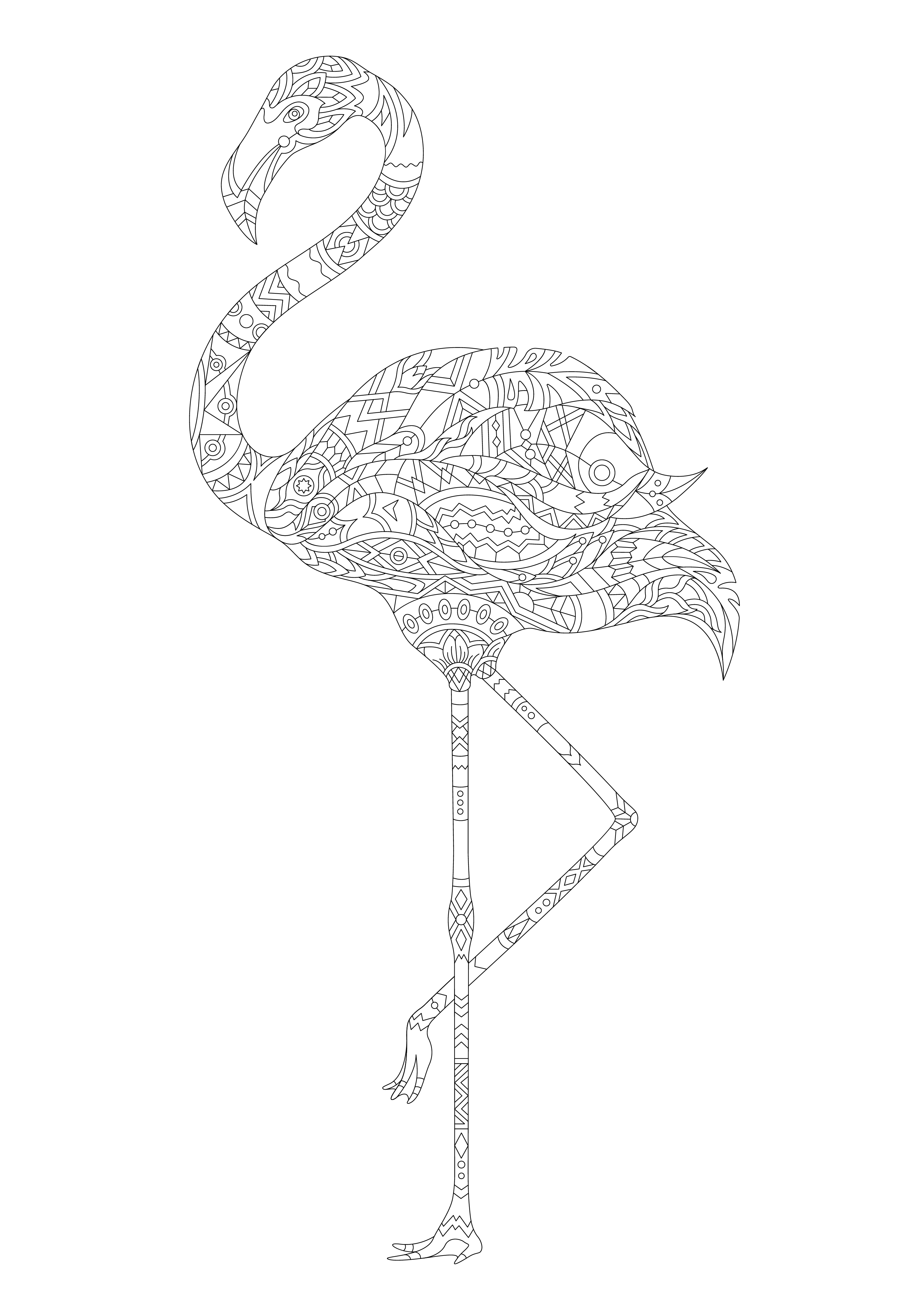 Coloring Page Of A Flamingo