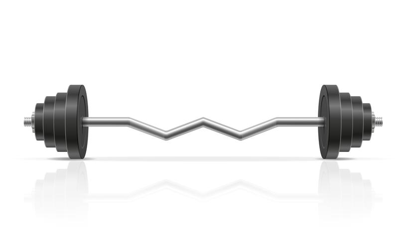 metal barbell for muscle