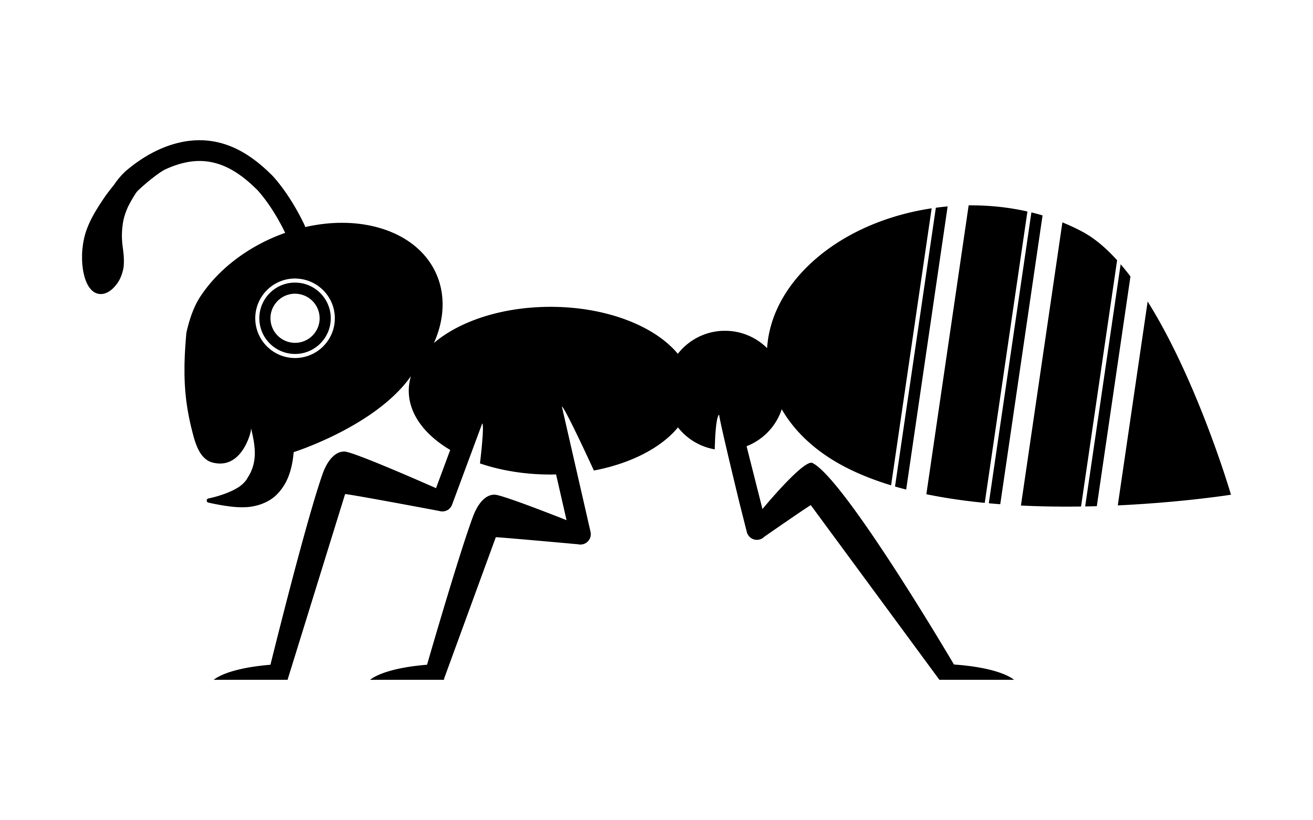 Cartoon Ant Insect Bug