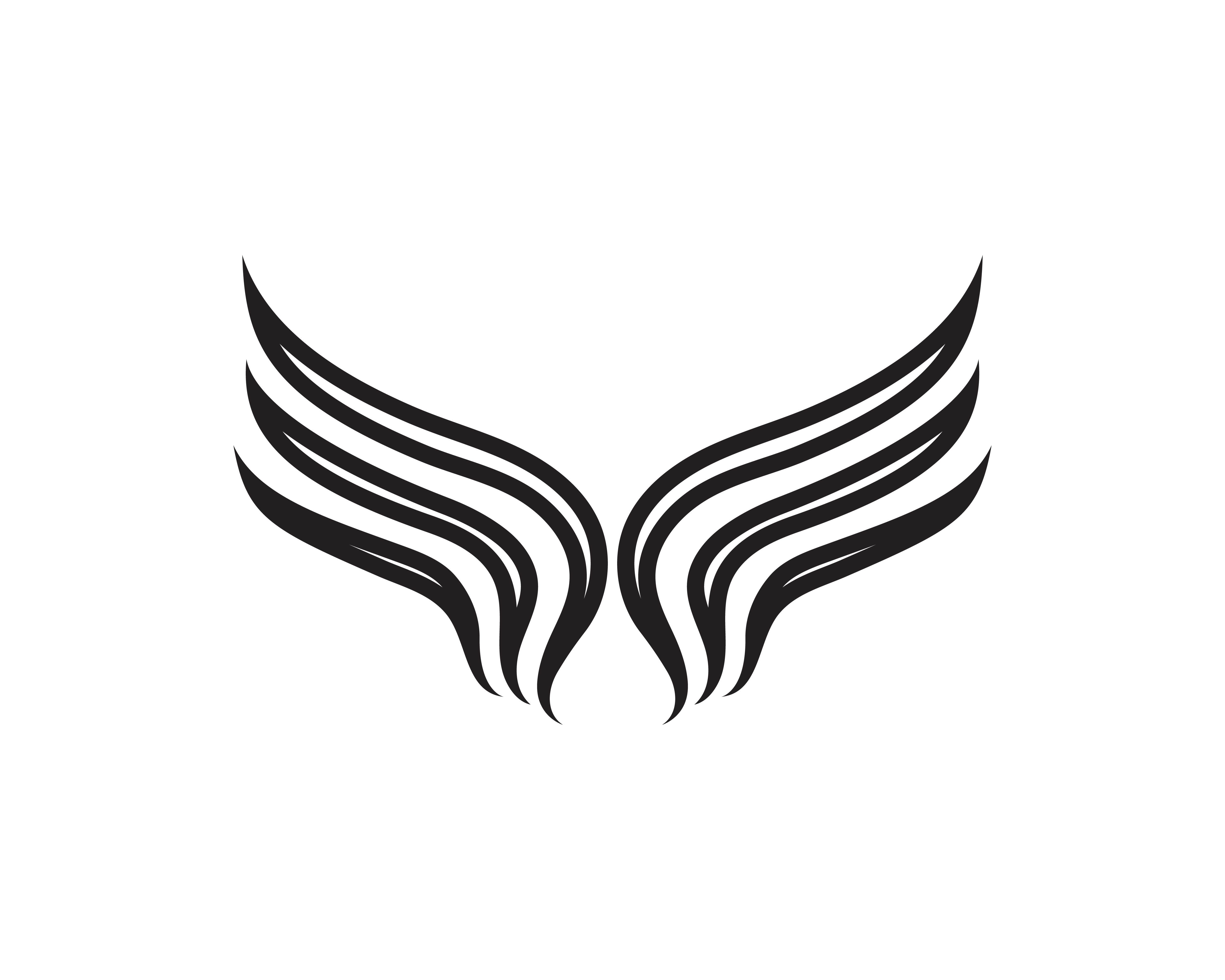 Wing Black Logo Template Vector Illustration Design Vector