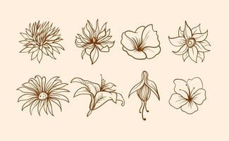 flowers free vector art
