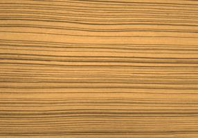 Beautiful wood texture background vector