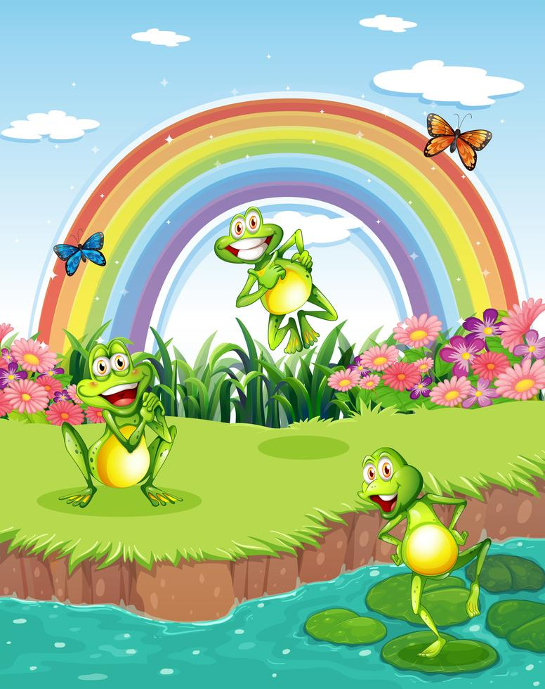 Drei verspielte Frösche am Teich und ein Regenbogen am