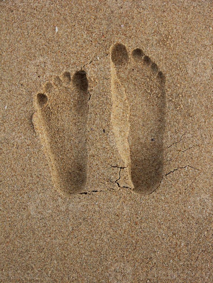 Trace De Pas Dans Le Sable : trace, sable, Traces, Sable, Banque, Photos