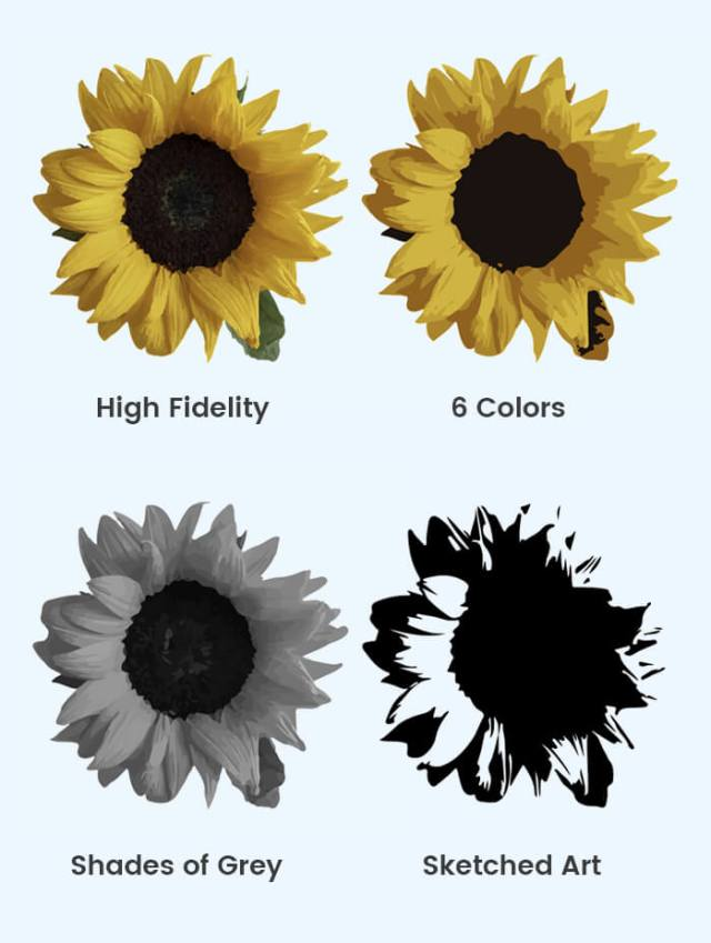 Convert JPG to Vector Different Results