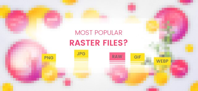 What are Raster Images and How to Optimize Them: Most Popular Raster Files