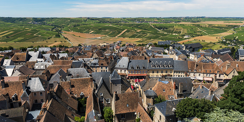 Get To Know The Wines Of France's Loire Valley