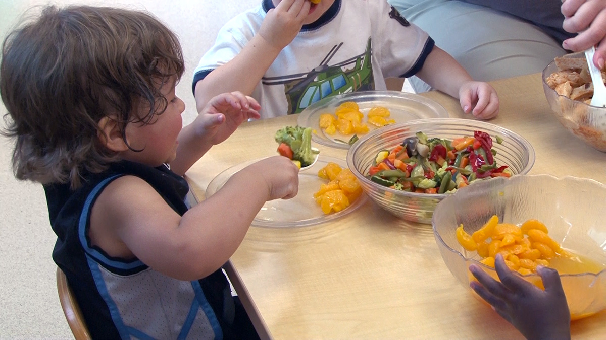 FamilyStyle Dining in Child Care Settings  VLS