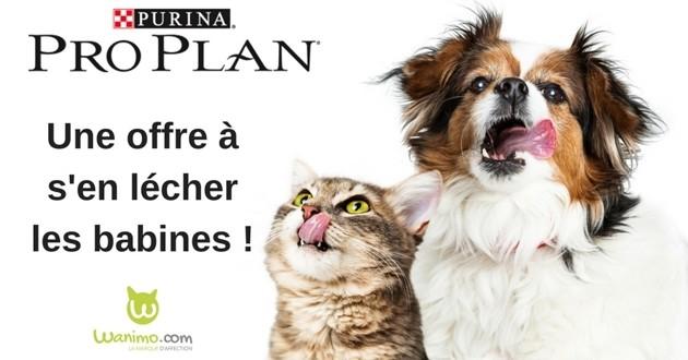 chiens et chats grace a ce code promo