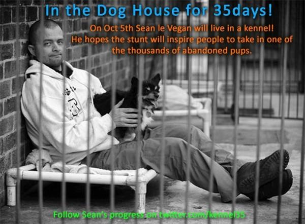 Sean Le Vegan va vivre dans un refuge pour chiens
