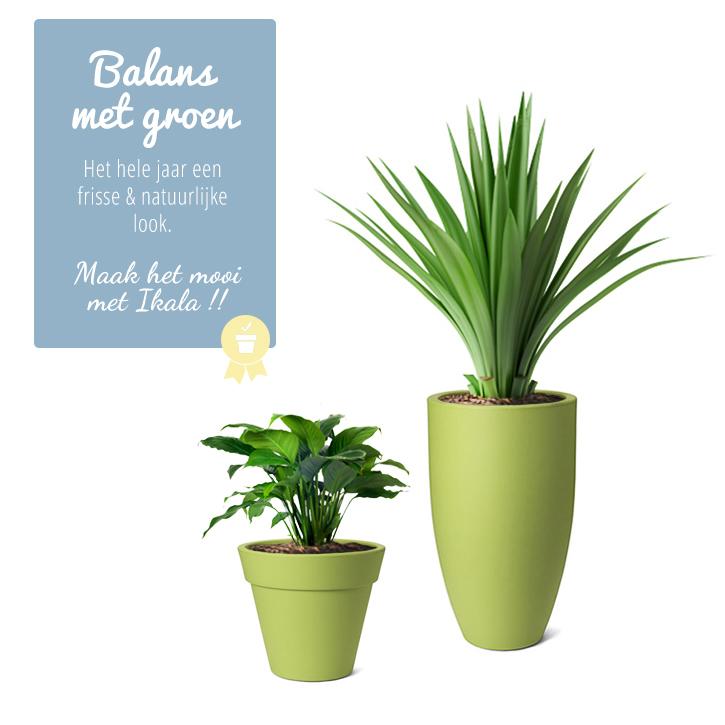 Zet de toon met groene bloempotten  plantenbakken  Ikala
