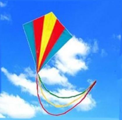 Meerkleurige Vlieger Met Staart kopen I MyXLshop Tip