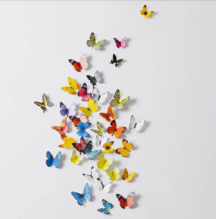 Muursticker mooie gekleurde vlinders 3D  Muurstickerszo