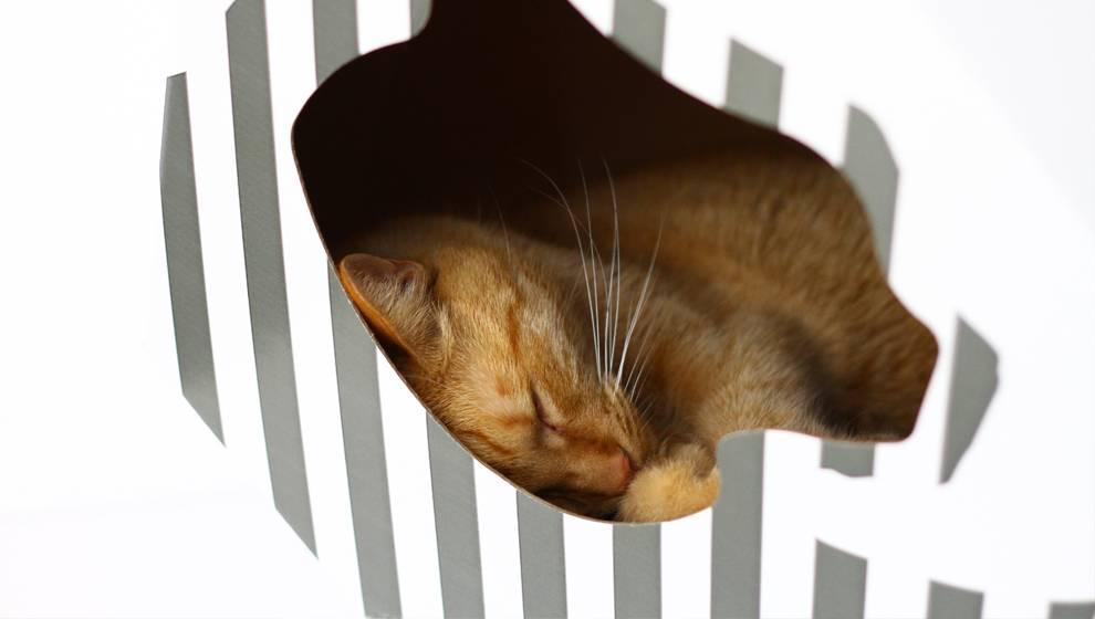 Trendy Kartonnen Kattenhuisje van myKotty  MaxLuna