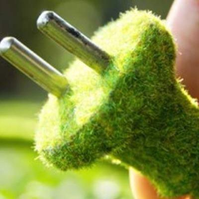 Plante Zelf elektriciteit opwekken  Fleurnl