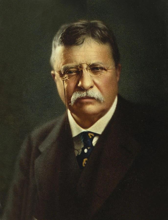 Teddy Roosevelt Portrait : teddy, roosevelt, portrait, Theodore, Roosevelt, (Cherry,, Plum,, Chrysanthemum), Alternative, History, Fandom