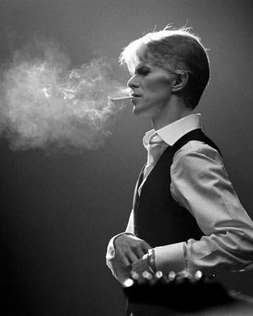 David Bowie Skinny : david, bowie, skinny, White, David, Bowie, Fandom