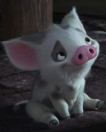 Pigs Name On Moana : moana, Disney, Fandom