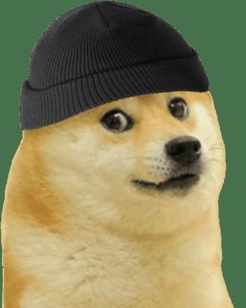 Doge Face Png : Dogelore, Fandom