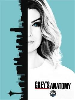 Grey's Anatomy Saison 16 Episode 1 Streaming : grey's, anatomy, saison, episode, streaming, Season, (Grey's, Anatomy), Grey's, Anatomy, Universe, Fandom