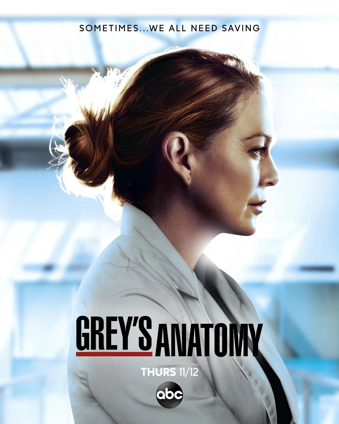 Grey's Anatomy Saison 10 : grey's, anatomy, saison, Season, (Grey's, Anatomy), Grey's, Anatomy, Universe, Fandom