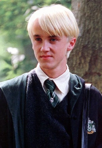 Harry Potter Drago Malefoy : harry, potter, drago, malefoy, Draco, Malfoy, Harry, Potter, Fandom