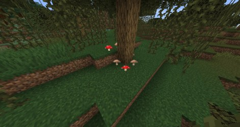 Mushroom Official Minecraft Wiki