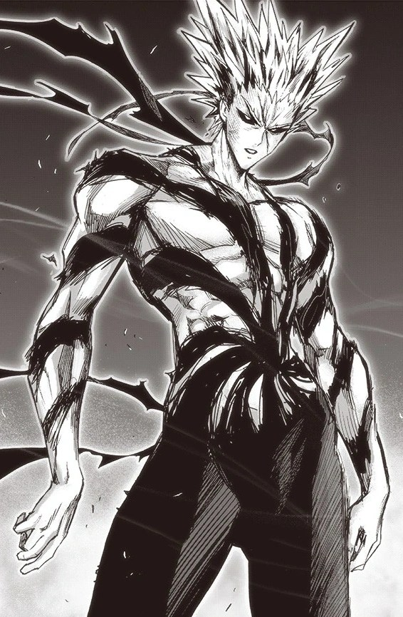 Manga One Punch Man Saitama Vs Garou : manga, punch, saitama, garou, Garou, One-Punch, Fandom
