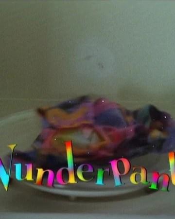 Going Round The Twist Intro : going, round, twist, intro, Wunderpants, Round, Twist, Fandom