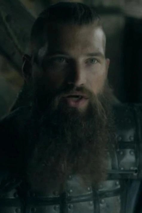 Top 10 des acteurs de vikings ! Skane Vikings Wiki Fandom