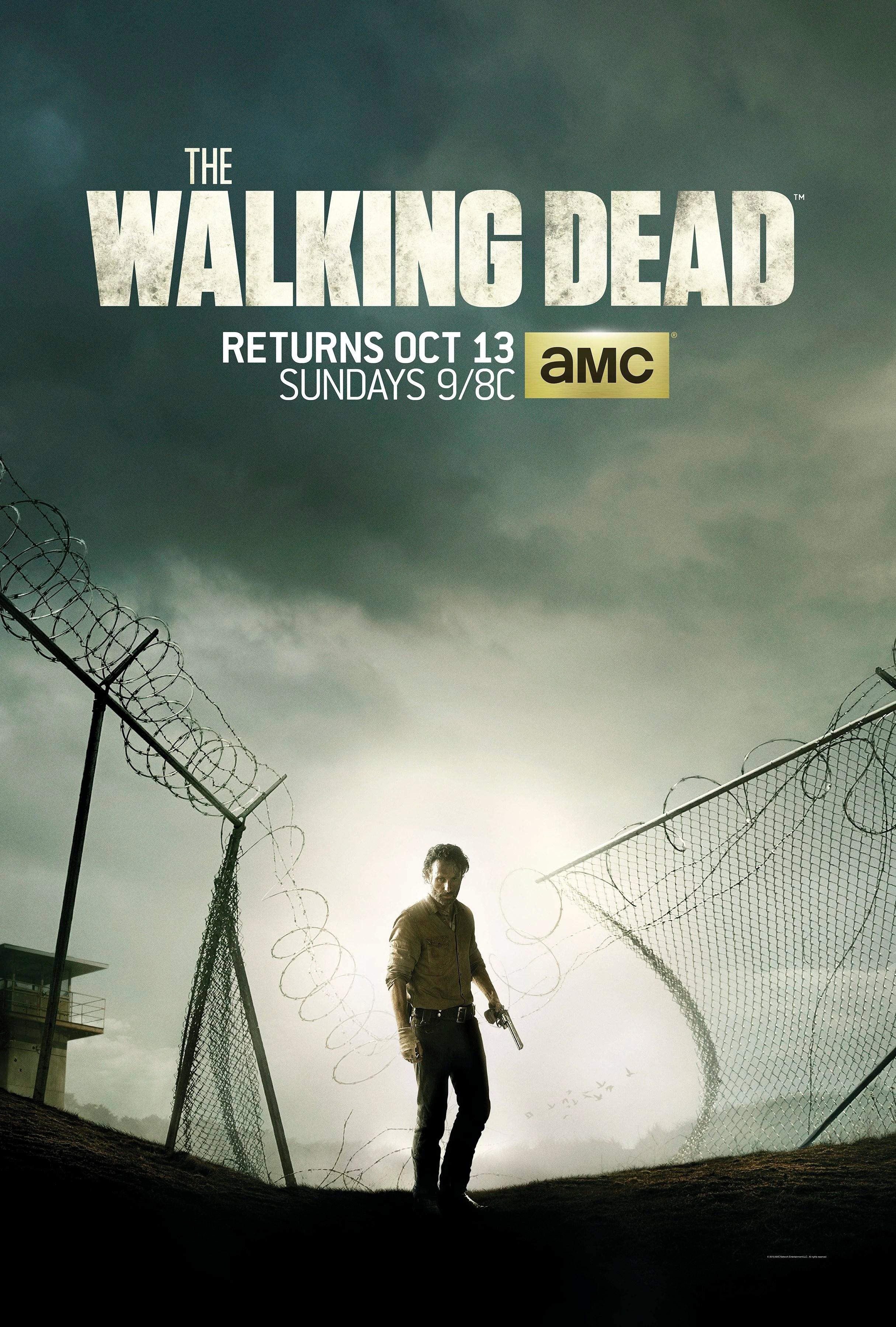 The Walking Dead Saison 9 Streaming Episode 13 : walking, saison, streaming, episode, Season, Series), Walking, Fandom
