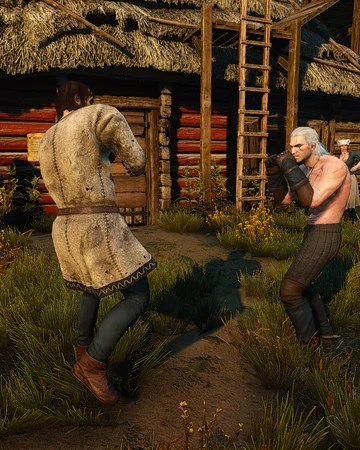 Witcher 3 Family Matters Fire : witcher, family, matters, Fists, Fury:, Velen, Witcher, Fandom