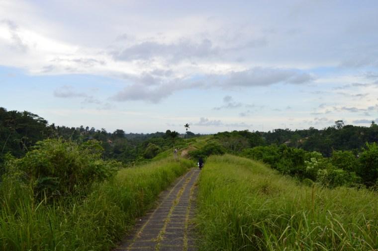 Ubud: Campuhan Ridge walk