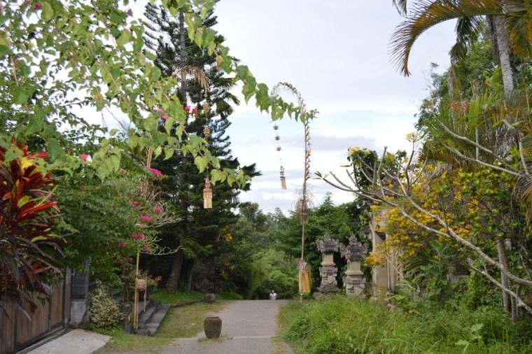 Bali: Ubud