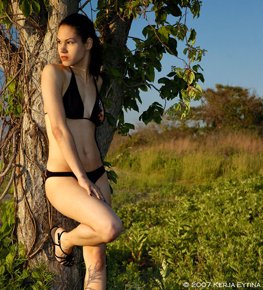 Image result for SYBELLE SILVERPHOENIX