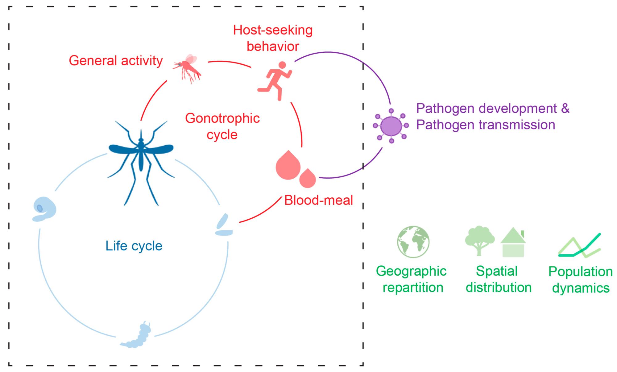 hight resolution of general transmission diagram