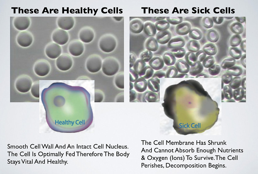 Heathy Cells Vs Sick Cells