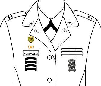 Navy Uniforms: Navy Uniform Regulations Ma Badges
