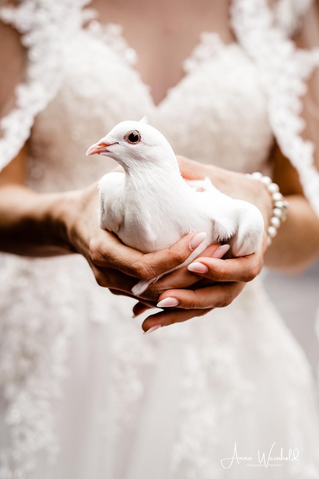 Hochzeit Gut Landscheid Burscheid Anna Weinhold Photography