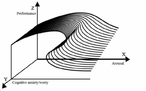 Performance Anxiety and the Catastrophe Model