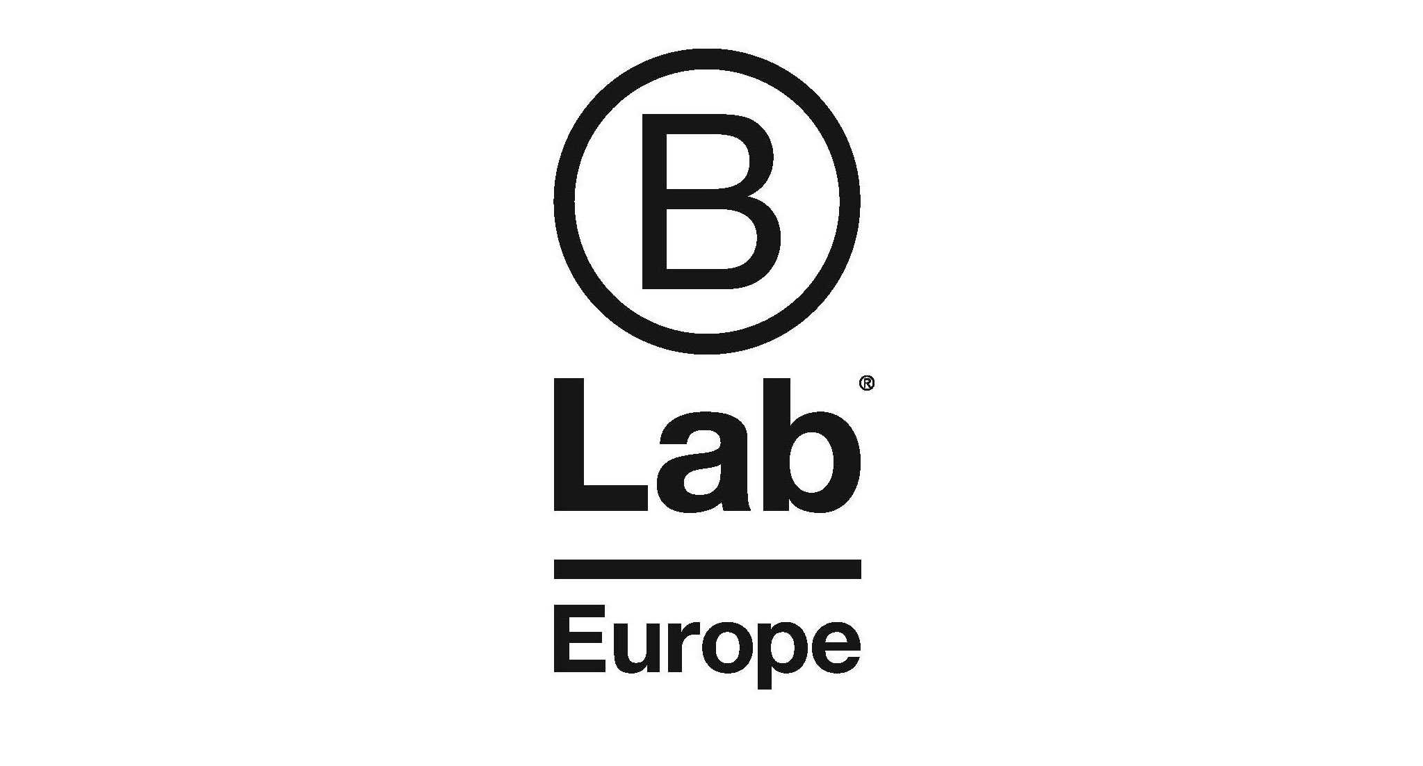 B Lab Response to the Questionnaire by the EU High Level