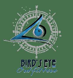 grafic eye [ 1252 x 1252 Pixel ]