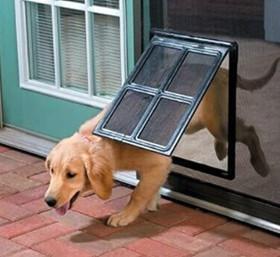 home sliding glass door doggy door