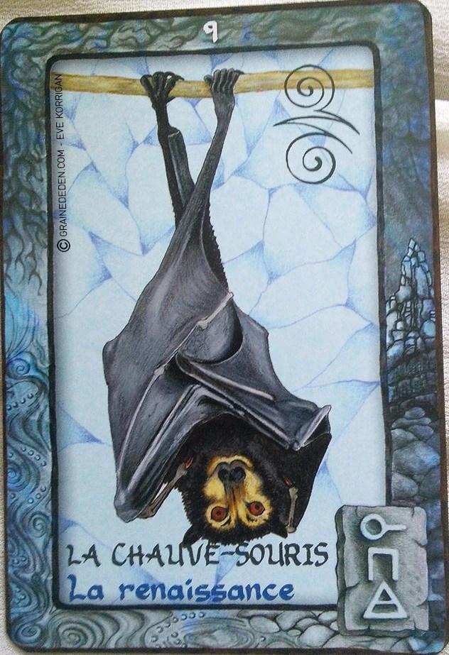 Danser Devant Une Chauve Souris : danser, devant, chauve, souris, Chauve-souris, Symbolisme