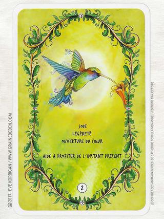 Le Chant Du Colibri Tirage : chant, colibri, tirage, Colibri, Symbolisme